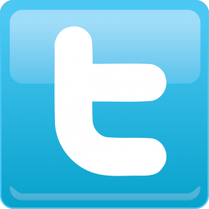 twitter_logo-300x300 animatrice webcam dans Article
